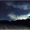 TheForest -星空の闇