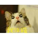 pero-pero-の我は猫=゜Д゜=gdgdコミュニティー
