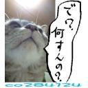 ピノさんがなんかやるみたいよ>( ゚o゚)ヤダァ(゚o゚ )