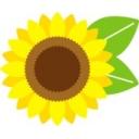 太陽光の株負け組放送
