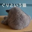 ぐり&どん(猫)Live配信