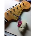 カピバラさんの不定期ギター