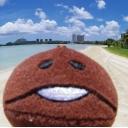 人気の「ゆっくり旅行」動画 3,962本 -なめこのぼっち旅行記製作委員会