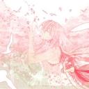 sad cherry blossoms