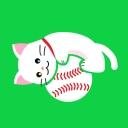 人気の「沖縄」動画 7,383本 -猫様のお部屋