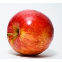 りんごの暇つぶし委員会