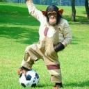 チンパン動物園