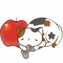 三毛猫と林檎
