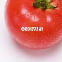 特産!しょきじぇるトマト直売所