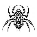 毒蜘蛛養殖場