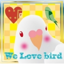 鳥が好きな人のコミュニティ