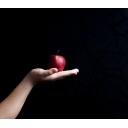りんごのコミュニティ!