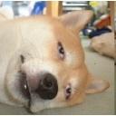 人気の「AIKa 7」動画 46本 -オンゲしたり、オフゲしたり、ラジバンダリ(古 !?Σ(・∀・;)