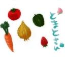 夏野菜収穫所!