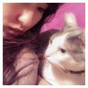 Video search by keyword 猫 - 山本のコミュニティ