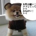 初見さん、大歓迎です!関西の方仲良くしてください!