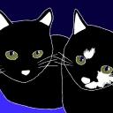 YUKIと猫の部屋