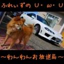 人気の「実況車載動画」動画 9,550本 -ふれぃずのわんわんお放送局