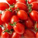 ミニトマト農園