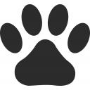 人気の「公式」動画 427,634本 -ゲームを垂れ流す犬