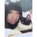 人気の「猫」動画 54,510本 -ちぇりーみるくのコミュニティ(*´-`)