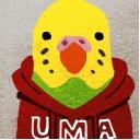 UMAの未確認コミュニティ