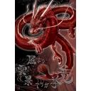 赤い龍の協力・交流と放浪日記