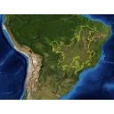 ブラジルの高原から