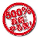 暫定ヒラグチ内閣【500%真剣(マジ)やる気!】
