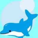 Enjoy dolphin