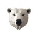 白熊の日常