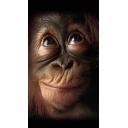 猿は猿なりにうるさくて良いんだよ!!!!!怒