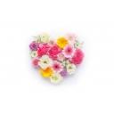 お花クラフト