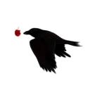 人気の「こち亀」動画 970本 -黒林檎の転がるほうへ ~紆余曲折の小径~