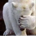 第2525小隊 白黒熊分隊