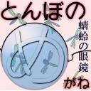 蜻蛉の眼鏡(とんぼのめがね)