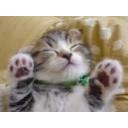 人気の「実況プレイpart1リンク」動画 111,174本 -サトリンのチャレンジ実況プレイIN「ニコニココミュニティ」