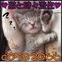 ❤Bar 猫と時々遊佐❤