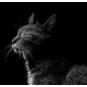 人気の「ルパン三世 PART5」動画 184本 -気楽にゲーム配信