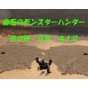 MHF世間話プレイ(生)