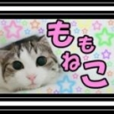 ゚+♡..__Momoneko's Land__..♡+゚
