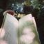 【勉強枠】  15994枠目 【癒しを映像と音楽で】
