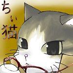 ちぃ猫@屋根裏さん
