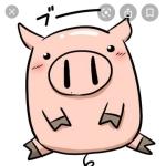養豚場から出荷