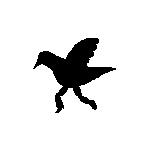 WalkBird