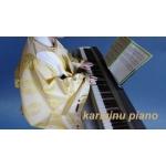 kariginu piano