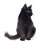田中アクエリアス