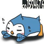 昼寝のシンヤ
