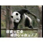 ひろや@つのぴょんMK2