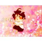 白い桜@帝王